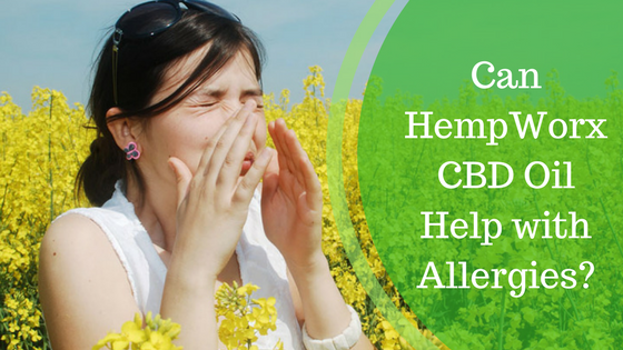 Cbd Oil And Allergies