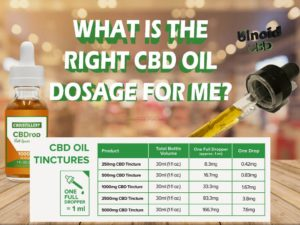 cbd oil dosage for cats anxiety